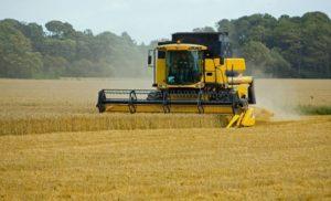 madr-va-lansa-sesiunea-de-depunere-de-proiecte-pentru-investitii-in-exploatatii-agricole-s13038-300×182